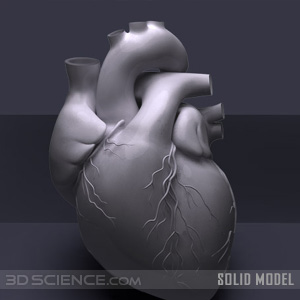 3d_solidmodels_heart_web1.jpg