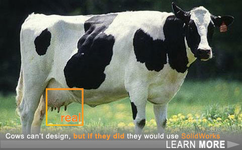 solidworks-cow