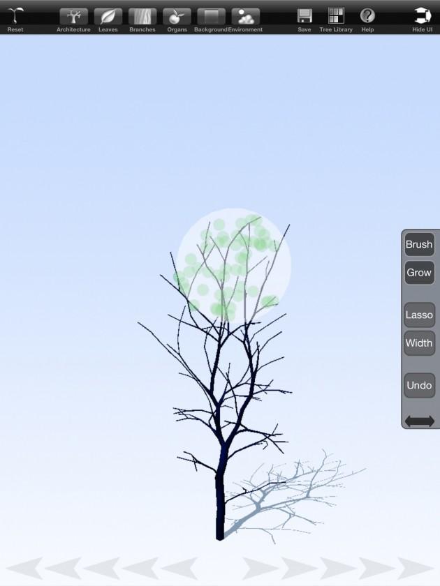 treesketch-30-Steven-Longay-02