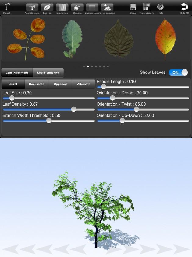 treesketch-30-Steven-Longay-03