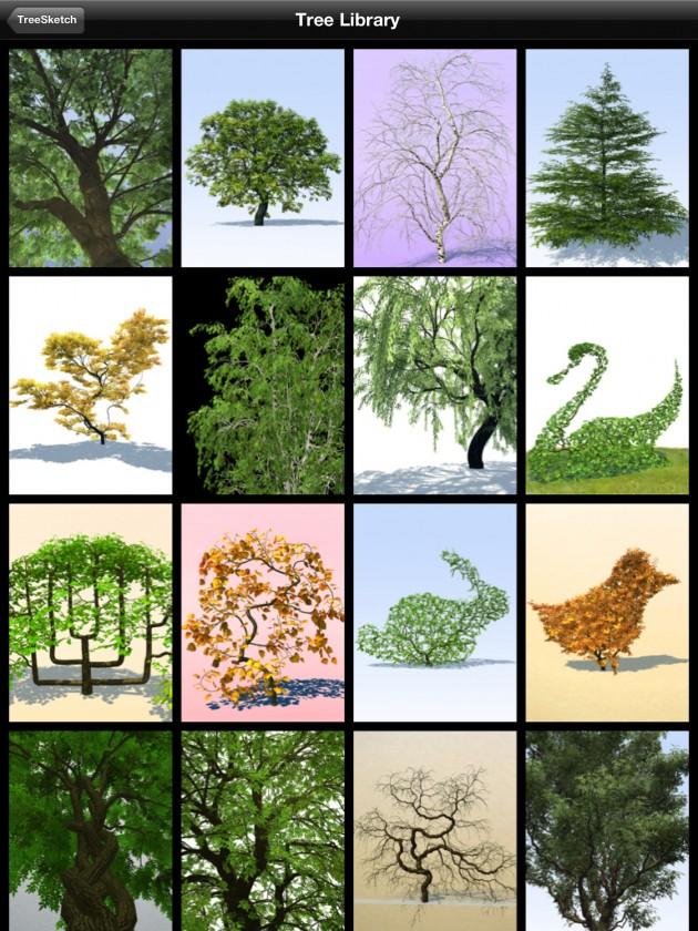 treesketch-30-Steven-Longay-10
