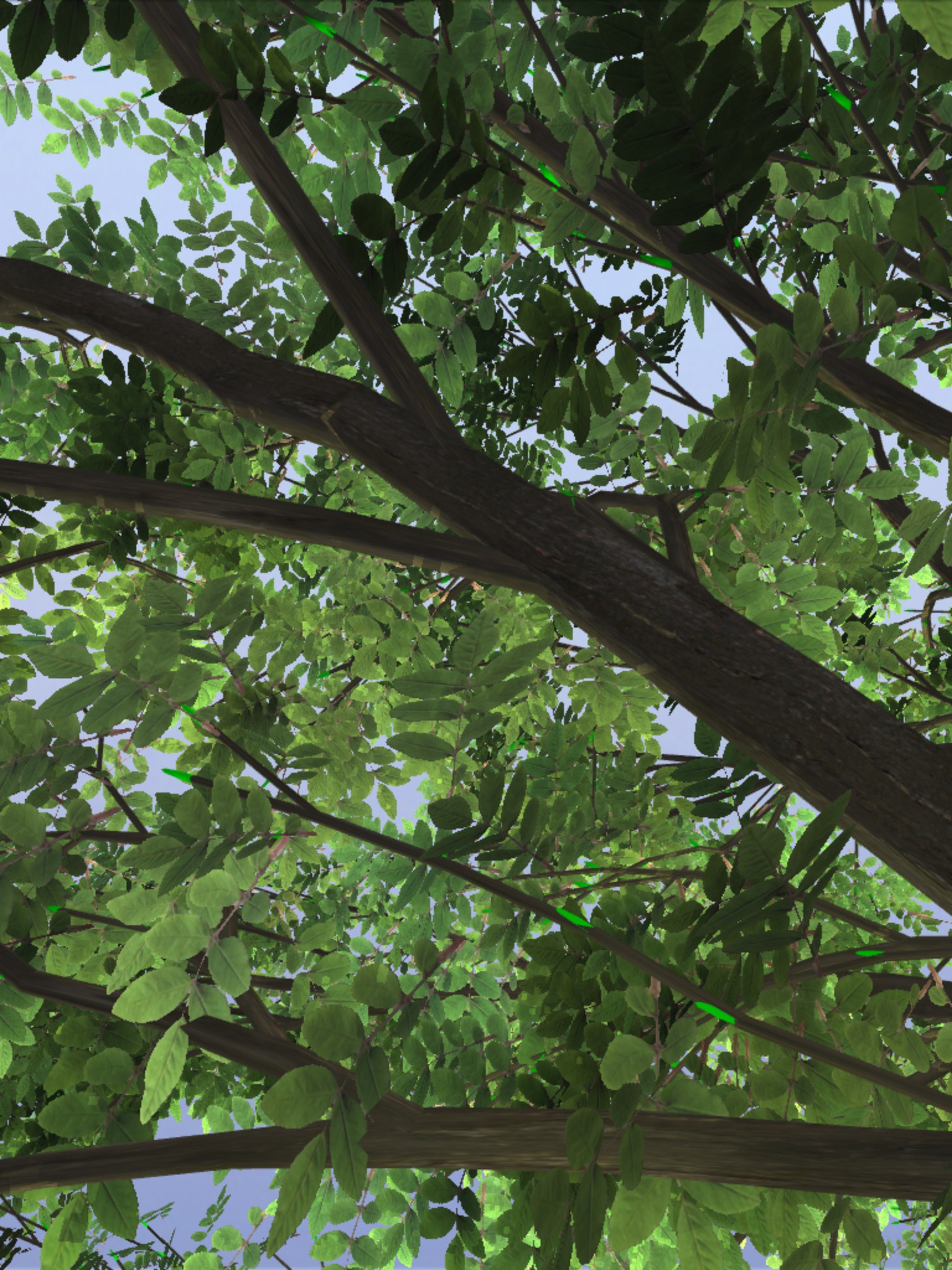 Must Have App: TreeSketch 3 0 - Procedural Modeling of Trees