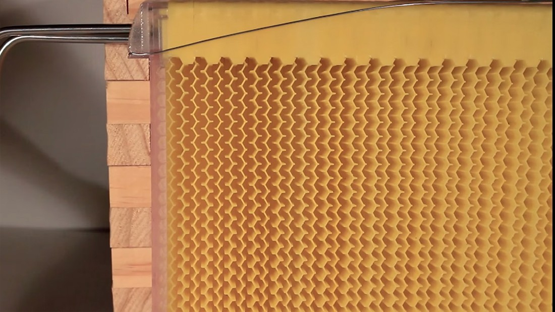 flow-hive-beehive-02