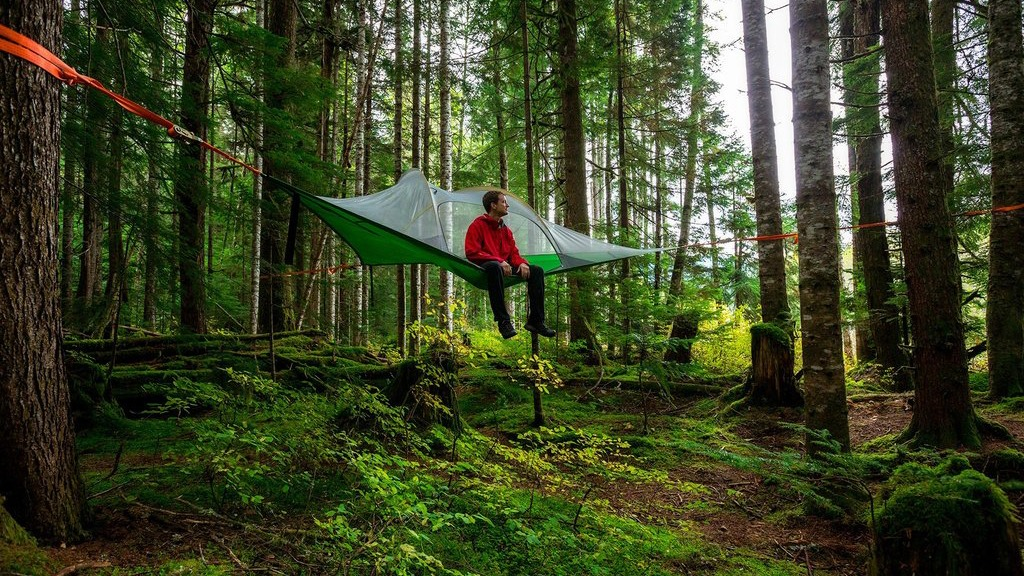 Tentsile Hammock Tents - Make a Treetop Adventure or Outdoor Oasis - SolidSmack & Tentsile Hammock Tents - Make a Treetop Adventure or Outdoor Oasis ...