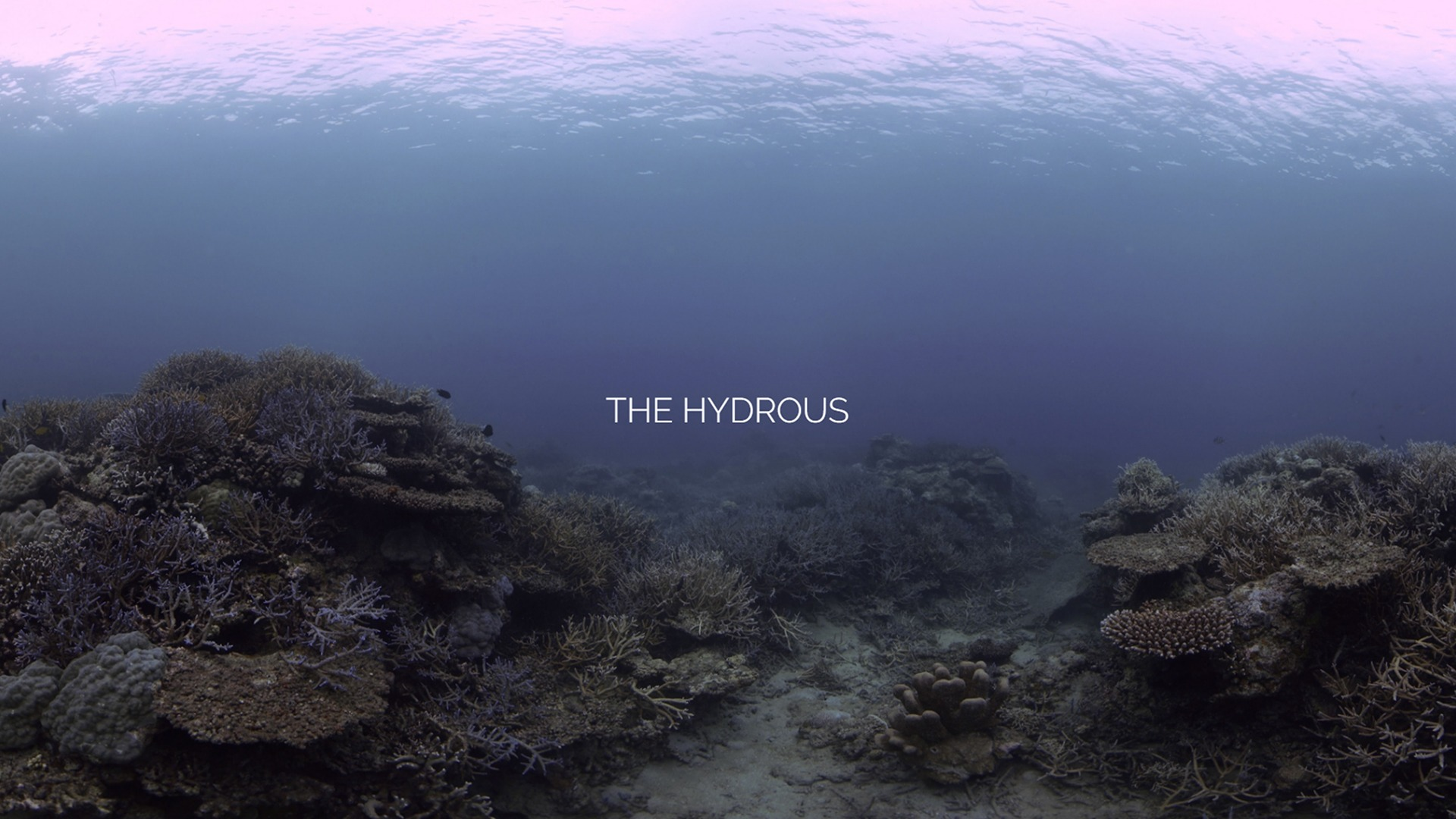 Think | REVOLUTION: How Hydrous Uses Reality Capture and 3D