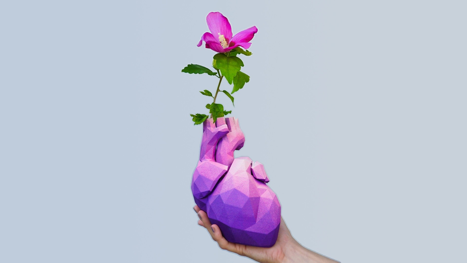 Model of the Week: 3D Low Poly Heart Vase [I ❤️ You So Much!]