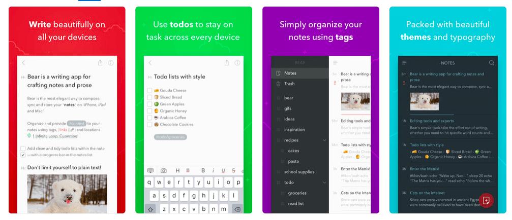Bear Writer App