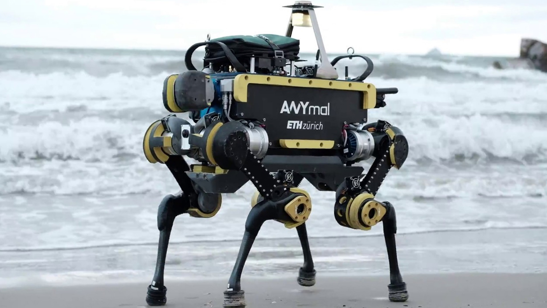 Robotics Dog