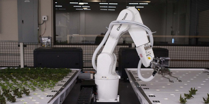 Lettuce-Farming Robots Might Grow Your Next Salad