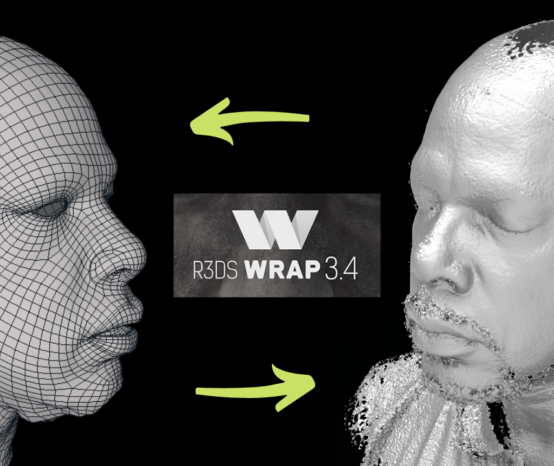 SkillCoach | Discovering R3DS Wrap 3 | The Perfect App for Preparing  3D Scan Data for MCAD!