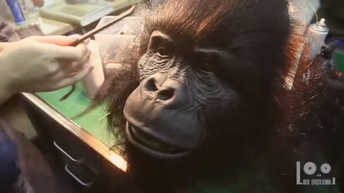 Lustre Effects gorilla head