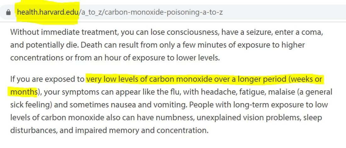 This Harvard Health article talks about potential health risks from exposure to carbon monoxide.