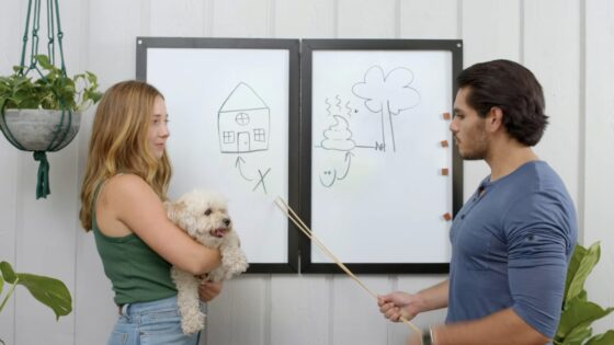 secret whiteboard